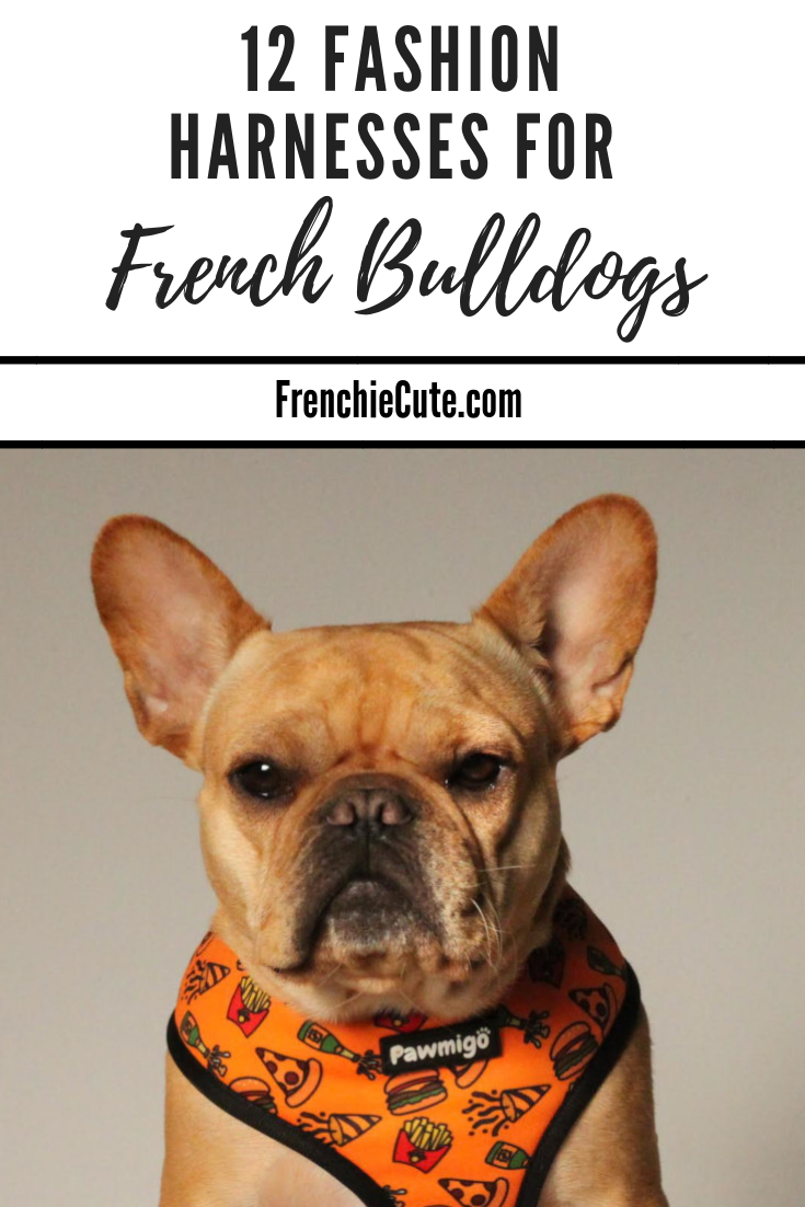 Best Harnesses for French Bulldogs - #Frenchiecute
