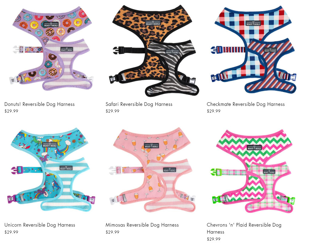 beast and buckle harness for french bulldogs, pugs and more